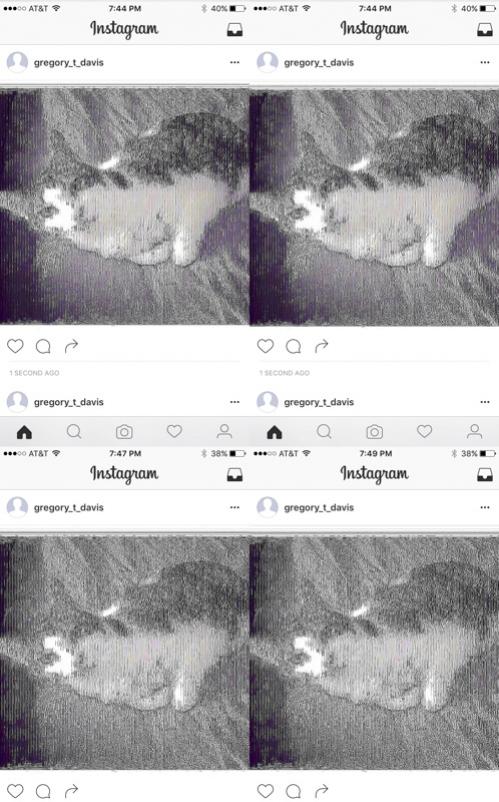 http://gregorytdavis.com/files/gimgs/th-7_Cat_01detail.jpg